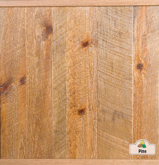 Pine (from Brad-mainpc) - Copy